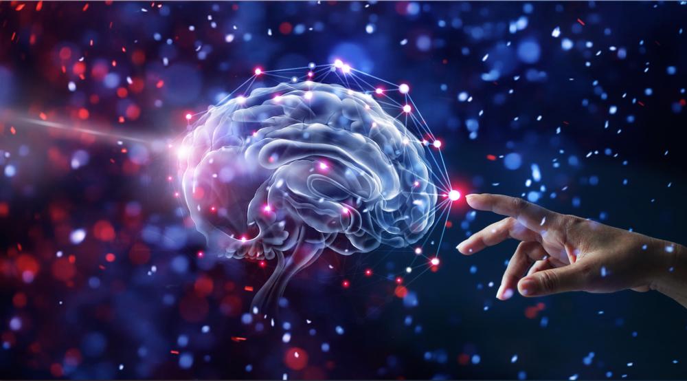 """""""آگاهی"""" از منظر علوم اعصاب چیست؟"""