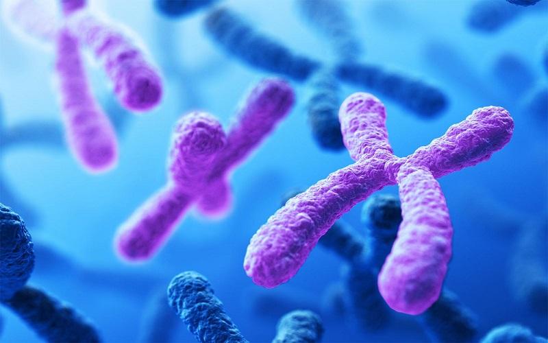 اختلالات کروموزومی و انواع آن