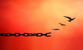 وابستگی و استقلال سالم و ناسالم